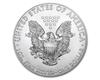 100x-1oz-American-Eagle-Silver-Coin-(2017)-tray-reverse